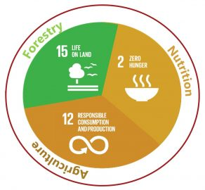 SDGsKun